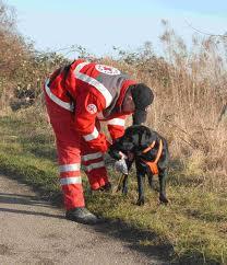cane soccorso