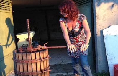 agricoltura vino donna vendemmia