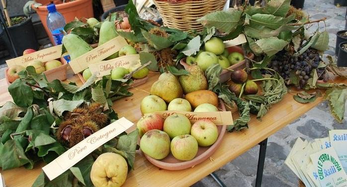 pennabilli_antichifrutti