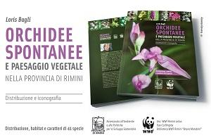 loris bagli_pubblicazione orchidee e paesaggio vegetale 2014