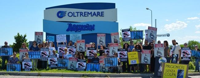 delfiniprotestaoltremare2