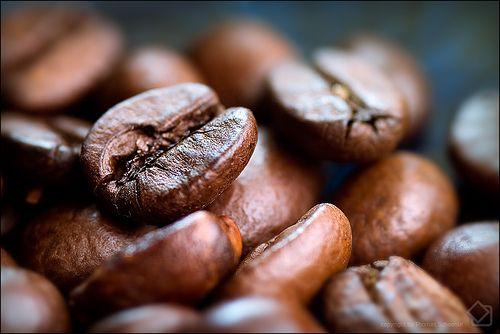 worldofcoffeerimini