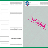 Regionali 2014_RN_FAC SIMILE