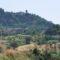 Rimini. Agricoltura, dalla Regione oltre 7 milioni per 1810 imprese del Riminese