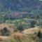 Rimini. Imprese agricole, sono in flessione (meno 0,6%). Solo 108 milioni di fatturato